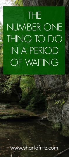 We all hate waiting. The story of Elizabeth teaches us the number one thing to do while waiting.