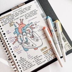 notes school notes textbook notes pretty notes notes design biology notes studyblr notes history notes sociology notes a Nursing School Notes, College Notes, Nursing Schools, Medical School, Math Notes, Science Notes, Revision Notes, Life Hacks For School, School Study Tips