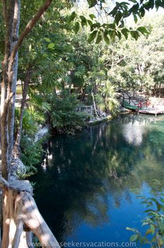 When you stay at Sandos Caracol Eco Resort on the Mayan Riviera, you can swim in the cenote that's right on the property! #familyallinclusiveresorts