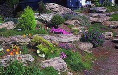 Google Image Result for http://www.homesdirection.com/wp-content/uploads/2012/06/Natural-Terraced-Rock-Garden.jpg