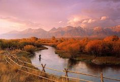 Silver Creek fly fishing in Idaho.