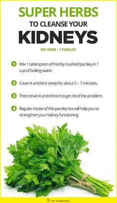 Kidney Cleanse Detox Parsley Herbs to Cleanse the Kidneys Parsley acts as a natural diuretic that promotes increased urine output which in turn flushes out the bacteria and germs from your kidneys Natural Health Remedies, Natural Cures, Cold Remedies, Natural Healing, Herbal Remedies, Health Diet, Health And Wellness, Food For Kidney Health, Natural Diuretic