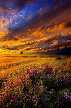Horizons by Phil Koch. Lives in Milwaukee, Wisconsin.
