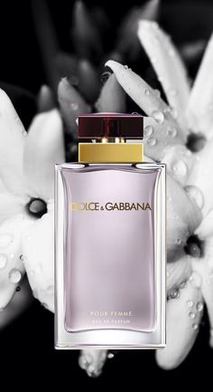Perfume Pin by Muna Abu Dalbouh. Perfume Scents, Perfume And Cologne, Best Perfume, Perfume Bottles, Dolce And Gabbana Perfume, Dolce Gabbana, Beautiful Perfume, Perfume Collection, Parfum Spray