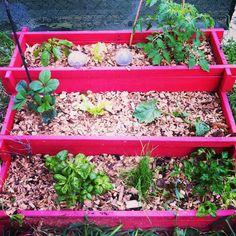 Cr ation d 39 une jardini re en escalier pour un balcon ou un for Jardin potager en escalier