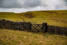 Landscape, Yorkshire Dales