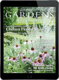 Make the most of your garden with expert advice, inspirational planting ideas and authoritative writing. Designing a beautiful garden starts here. Amazing Gardens, Beautiful Gardens, Raised Garden Beds Cinder Blocks, Abc Garden, How Plants Grow, Organic Gardening Magazine, Easy Vegetables To Grow, Planting Plan, Chelsea Flower Show
