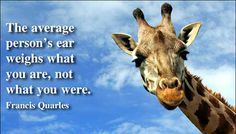 The average person's ear weighs what you are, not what you were. Francis Quarles More Quotes at http://amazingquotes.co