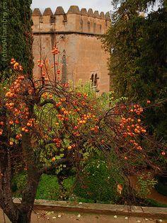 Torre de los Picos en la Alhambra