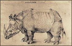 by Albrecht Durer, 1515