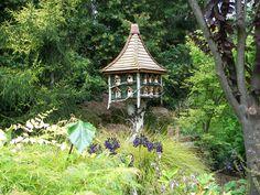 freelandtanner.com.1097 Bird house perched on birch branch