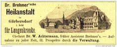 Original-Werbung/Inserat/ Anzeige 1894 - GÖRBERSDORF IN SCHLESIEN / HEILANSTALT - ca. 110 x 45 mm