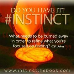 What needs to be burned away in order to refine what you're focused on finding? #INSTINCT http://instinctthebook.com/   》Autographed copies are available at http://tdjakes.org/instinct  》For International orders http://barnesandnoble.com/  》Download Nook Book edition http://barnesandnoble.com/  》Download eBook Kindle edition http://amazon.com/