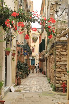 corfu greece streets - Google Search
