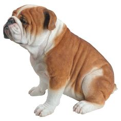 Look at the sweet face on this Natures Gallery Sitting Bulldog Statue . This bulldog statue is designed in a sitting pose that is perfectly life-like. Bulldog Breeds, Bulldog Puppies, Bull Dog Ingles, Deer Statues, Family Dogs, Yorkshire Terrier, Yorkie, Pet Dogs, Doggies