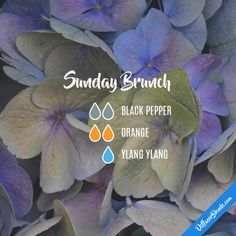 Sunday Brunch - Essential Oil Diffuser Blend