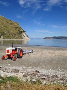 Mahia Beach New Zealand, My Photos, Art Ideas, Ocean, Country, Live, Beach, Places, Photography