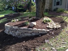 We created this landscape from scratch . Building the accent wall with Laurel Mountain stone , Plantings and Large River Rock