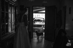 Fairlane  #ivanagorosito #fotografiadebodas #bodadedia #notesueltomas #noviasreales #tevuelvoaelegir #okmecaso #siquiero #fotografasargentinas #rockbride #yourockphotographers #autodenovia #bohobride #reciencasados #lookslikefilm #bridespirit #novias2018