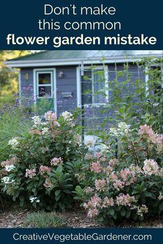 261 best garden flowers plants images in 2019 flower gardening rh pinterest com