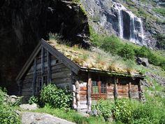 http://buzzly.fr/quelques-unes-des-plus-belles-toitures-vegetales-photographiees-autour-du-monde.html
