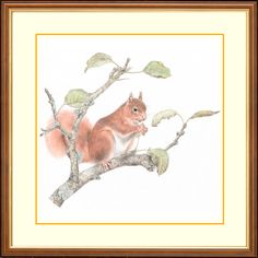 'Moments Rest' - Squirrel #gifts #wildlife #painting #squirrel