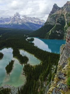 Lake O'Hara is a lake at an elevation of m in the alpine area of Yoho National Park, in the province of British Columbia, Canada Yoho National Park, National Parks, Wonderful Places, Beautiful Places, Amazing Places, Amazing Things, Beautiful Flowers, Places To Travel, Places To See
