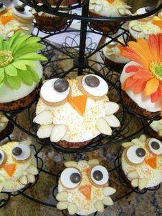 Owl cupcakes!  Almond slivers for the feathers... so cute!