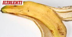 Diy And Crafts, Banana, Fruit, Finland, Food, Tips, Ideas, Essen, Bananas