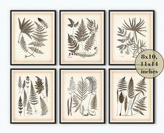 Vintage fern print Vintage botanical print Antique fern