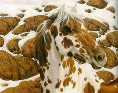 The art of camouflage - Bev Doolittle, giclee canvas and paper, serigraphs. Illusion Kunst, Illusion Art, Bev Doolittle Prints, Horse Artwork, Painted Pony, Indigenous Art, Equine Art, Native American Art, Native Art
