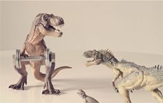 Humorous Images Of Miniature Animals And Their Human-Like Struggles In Real Life - DesignTAXI.com