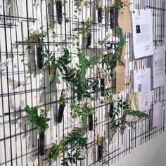 Inspireras av vår egen florist som kombinerat Kris, Test Tube och nypor till en häftig & levande väggdekoration. Kris 569kr. Test Tube 159kr. Nypor Peg från 20kr. Trevlig helg! #habitatsverige