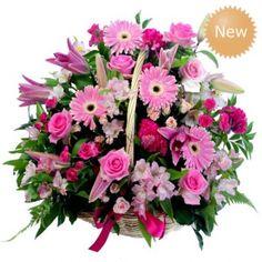 Large flower basket gold coast Australia