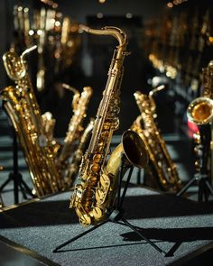 Sax legend Bob Mintzers first choice of tenor saxophone. A serious heavyweight addition to our pro sax range, the Street Tenor captures a classic vintage sound – full bodied and free blowing – and combines this with wonderful ergonomics. Namm Show, Dave Grohl, Book Boyfriends, Custom Guitars, Backpack Straps, Gibson Les Paul, Van Halen, Clarinet, Indie Music