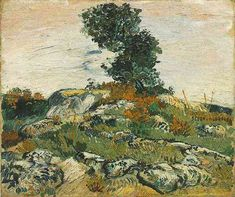 Rocks with Oak Tree - Van Gogh - 1888