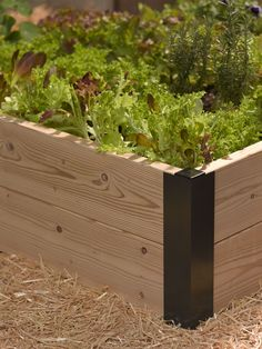 (these have an open corner that a fence post could fit into) Raised Bed Corners | DIY Raised Garden Beds | Made in Vermont