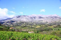 ART TRAVEL Crete, Mount Rainier, Mountains, Nature, Travel, Naturaleza, Viajes, Trips, Nature Illustration