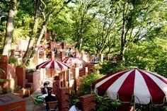 ラピュタの世界が舞い降りたような天空のカフェ。鎌倉『樹ガーデン』の素敵すぎる歴史   SELECTY