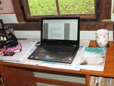 Necessities: granny glasses, cup of hot tea, computer, first copy of new novel