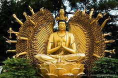 A gold, one thousand armed Buddhist statue at the Temple of 10000 Buddhas in Hong Kong