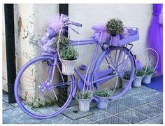 Think this would clash with a pink coloured helmet? by fotoarte love this unrideable bike purple bike and purple flowers Old Bicycle painted purple and decorated with pots of purple flowers. such a pretty color of blue/lavendar Purple Love, All Things Purple, Purple Lilac, Purple Rain, Shades Of Purple, Periwinkle, Purple Flowers, Deco Nature, Bicycle Art
