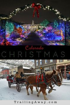 Top 5 Colorado Christmas Activities : From parades to sledding, there are so many fun Colorado Christmas activities to get you in a festive mood! Here are our top five! Best Christmas Vacations, Christmas Getaways, Christmas Destinations, Christmas Events, Christmas Town, Christmas Travel, Christmas Ideas, Christmas Girls, Christmas Holidays