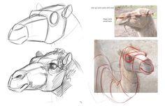 camel_head.jpg (1600×1035)