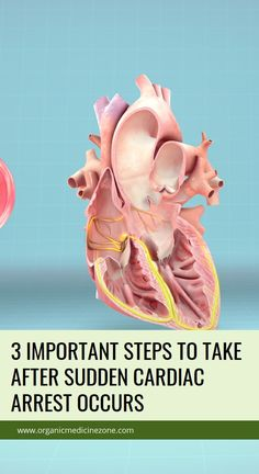3 Important Steps to Take after Sudden Cardiac Arrest Occurs Health Benefits, Health Tips, Health And Wellness, Health Care, Natural Cold Remedies, Herbal Remedies, Sinus Infection Remedies, Health Vitamins, Seasonal Allergies
