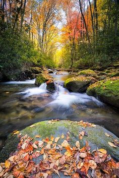 ~~Silky Autumn Stream in the Smokies ~ Little River, Great Smoky Mountains National Park, Tennessee by dfikar~~ by emilia