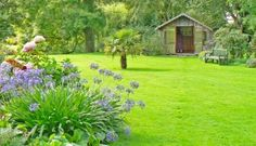 Lawn Care – Learn How to Create and Maintain the Perfect Lawn - Read more: http://www.rattangardenfurniture.co.uk/blog/lawn-care-learn-how-to-create-and-maintain-the-perfect-lawn/