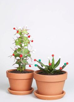 Christmas cactus can be a beautiful architecture for a festive home that gets passed down for generations. Cactus Christmas Trees, Christmas Mood, Noel Christmas, Christmas Decorations, Xmas, Christmas Plants, Tropical Christmas, Funny Christmas, Holiday Decorating