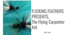Flicking Feathers is creating Fishing and fly tying videos and articles | Patreon