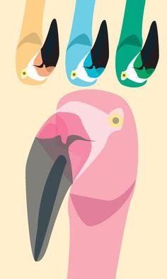A rainbow of flamingos.